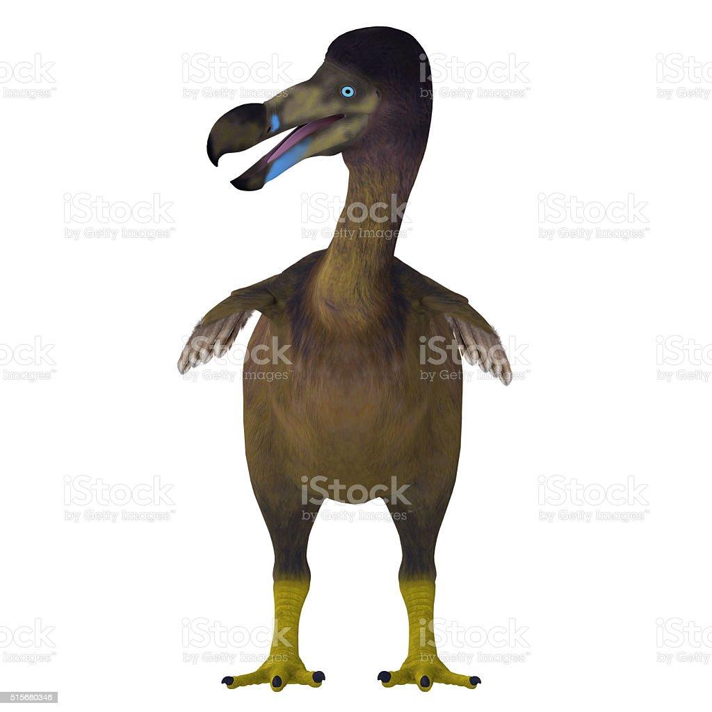 Dodo Bird on White stock photo