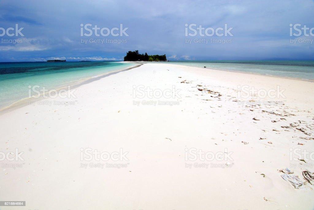 ドドラ モロタイ島 - インドネシ...