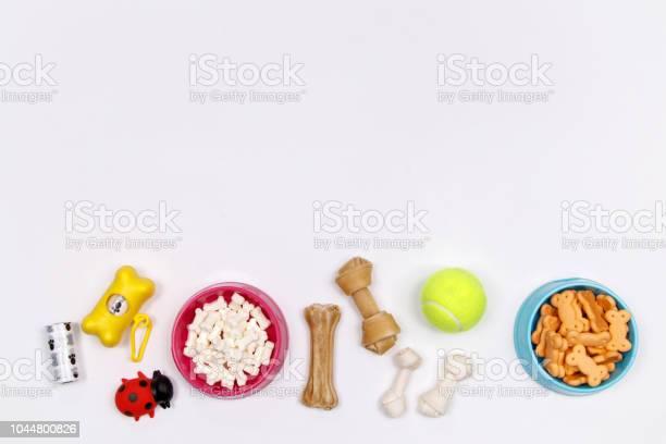 Dog accessories food and toy on white background flat lay top view picture id1044800826?b=1&k=6&m=1044800826&s=612x612&h=5s8q9omxjg1yndljujegayju wabhuidnlpwz5pmjzs=