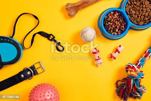 istock Dog accessories on yellow background. Top view. Pets and animals concept 877065146
