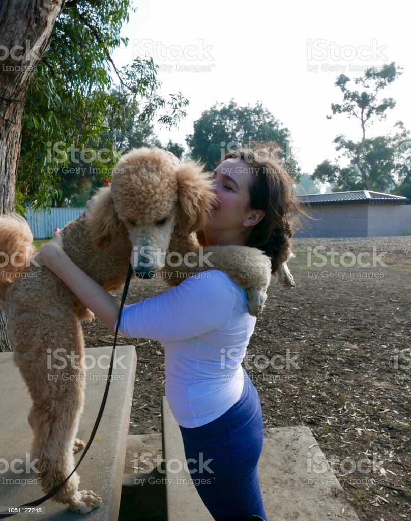 Young woman actively training her dog to do agility course in park...