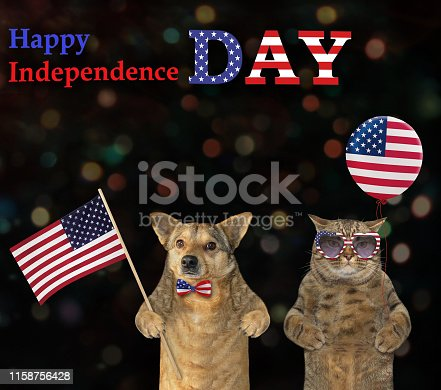 490776989 istock photo Dog and a cat patriot together 3 1158756428