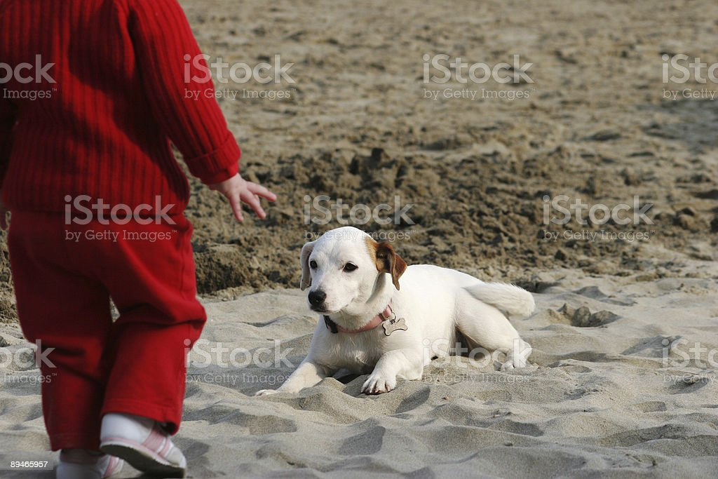 dog and baby royalty-free stock photo