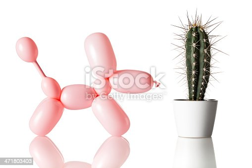 istock Dog and Cactus - Humor Bizarre Excitement Balloon 471803403
