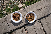 istock Dog and cat food on the sidewalk. 1300793686