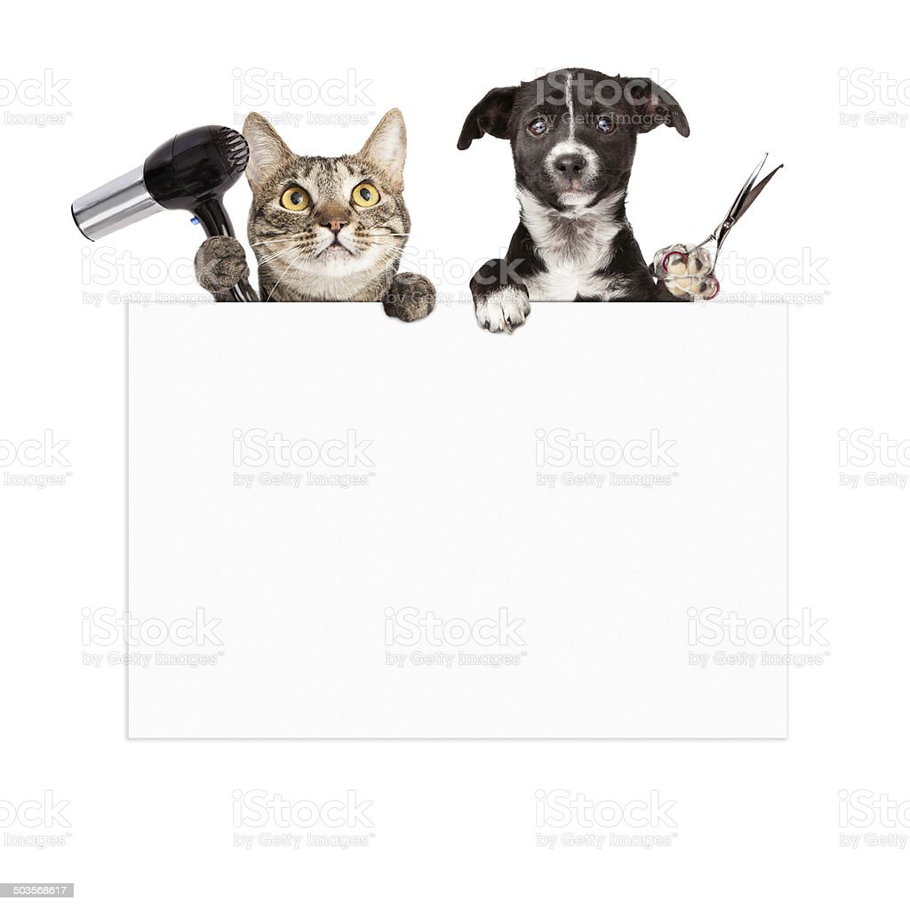 Dog and Cat Grooming Blank Sign stock photo