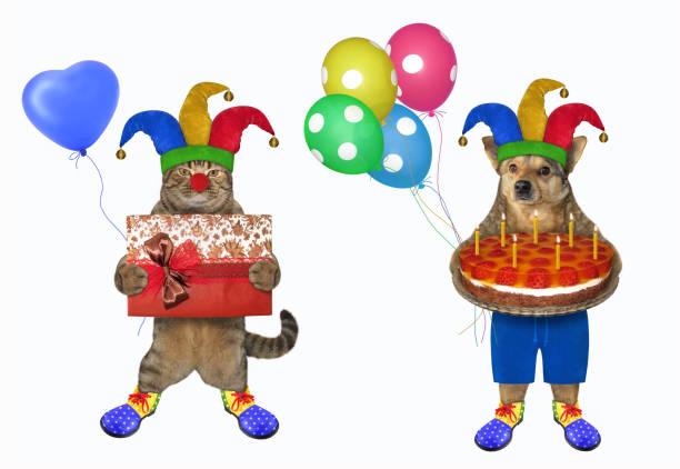 Dog and cat in clown costumes picture id1215340226?b=1&k=6&m=1215340226&s=612x612&w=0&h=z7jhooztt7l7bmlqcaaazcpnpsy6lv7ijqjm ozqjwm=