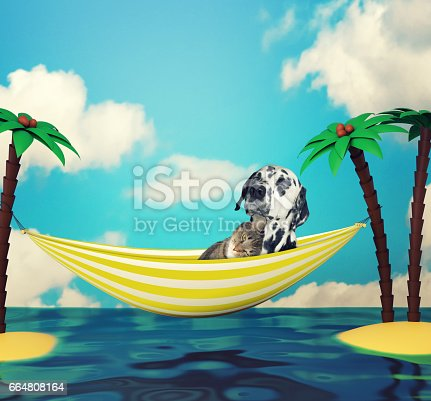 531058808istockphoto dog and cat relaxing. Holiday and travel 664808164