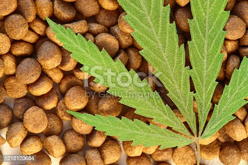 Dog and cat treats and cannabis leaves isolated over white background - CBD and medical marijuana for pets concept, Medical and recreational marijuana and cannabis