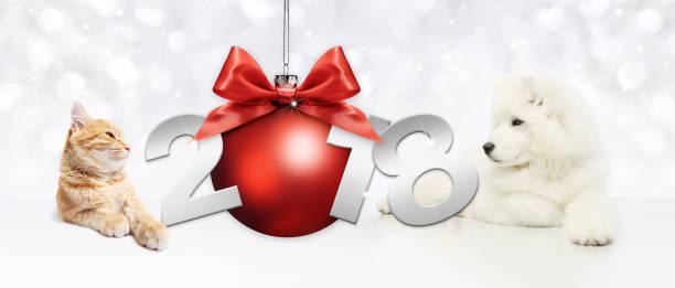 hund und katze mit rote weihnachtskugel und 2018 text auf weißem hintergrund - silvester mit hund stock-fotos und bilder