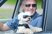 istock Dog and his owner traveling in a car 1141198154