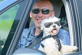 istock Dog and his owner traveling in a car 1141198892