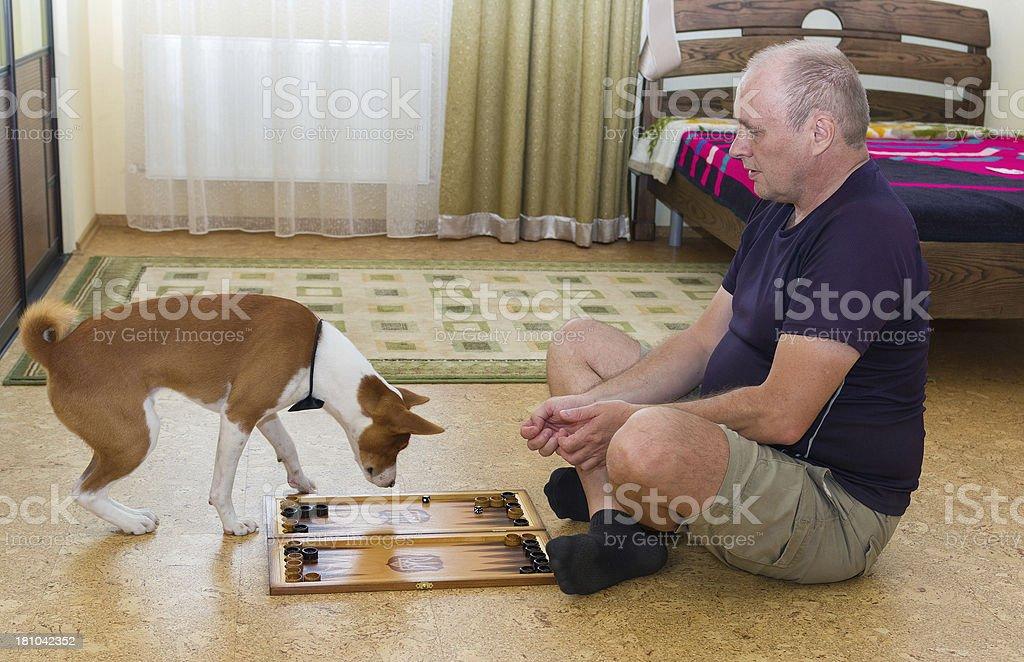 Dog and man playing backgammon stock photo