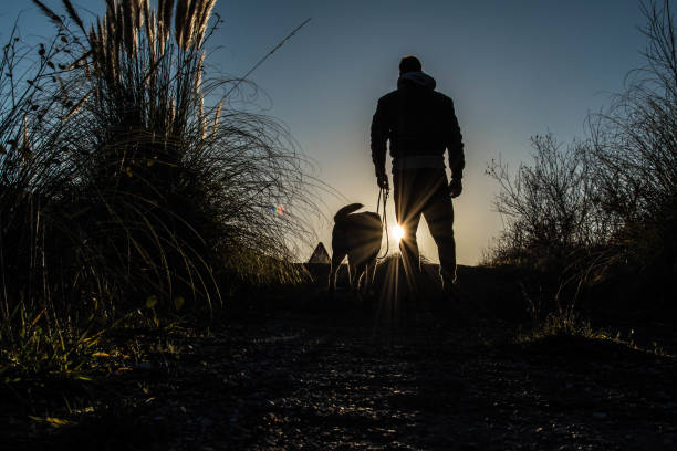Dog and man together to the end