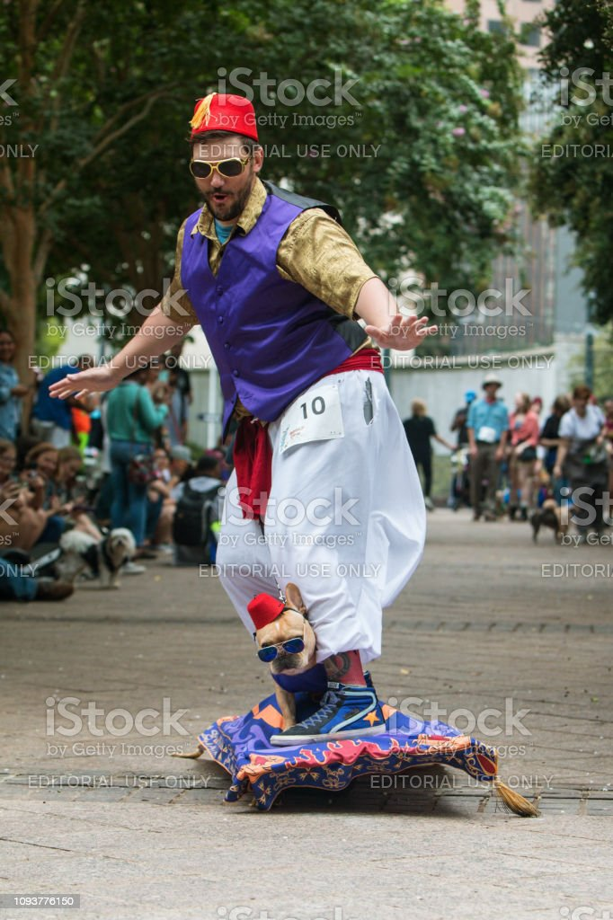 Dog And Owner Ride Flying Carpet At Doggy Con Event stock photo