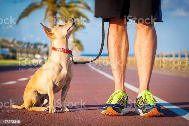 Dog and owner walking picture id477573346?b=1&k=6&m=477573346&s=612x612&h=rmknewsmcd0rwh6ghurpla7g2mrj9nz2vro1ooskhc4=