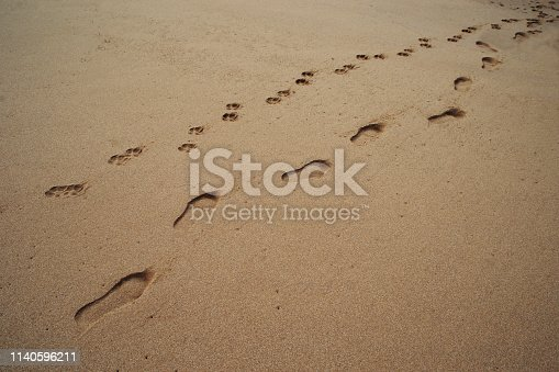 istock dog and owner's footprints 1140596211