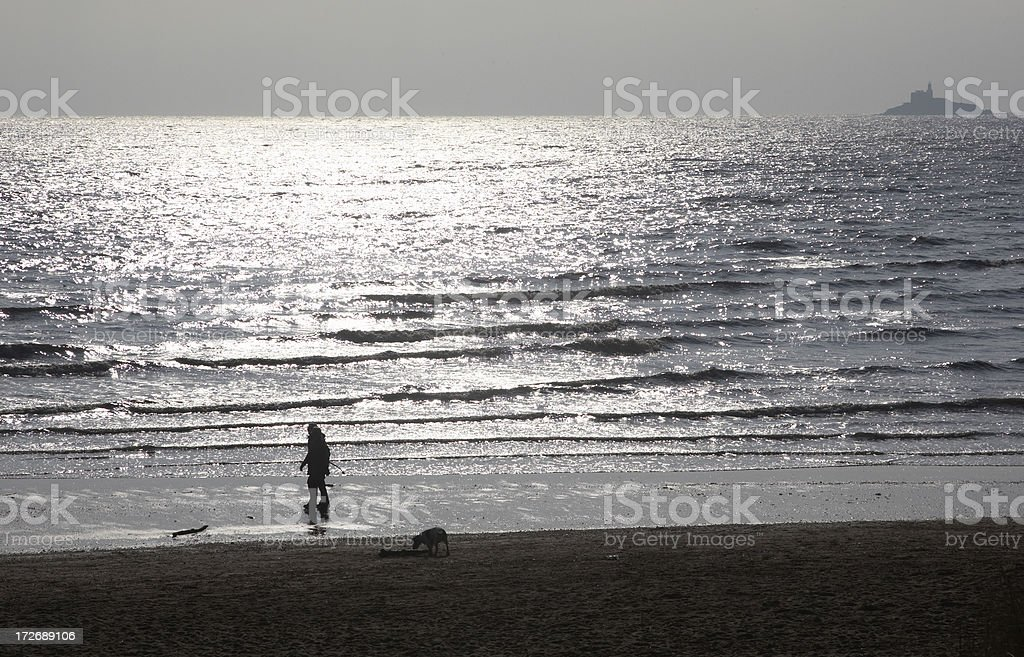 Dog and owners strolling silhouette at seashore royalty-free stock photo