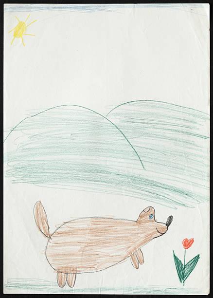 cão de tulipas e flores. desenho de criança. - cachorro desenho - fotografias e filmes do acervo