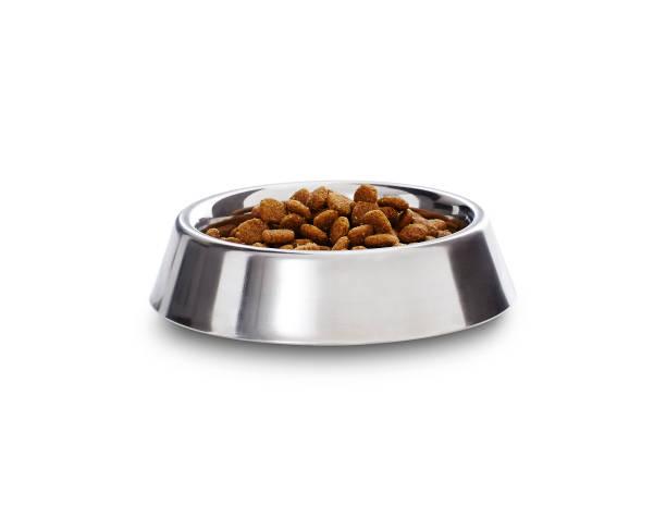 dog biscuits in a bowl - dog food imagens e fotografias de stock