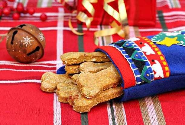 hund, biscuits mit kürbis und speck mit weihnachtsstrumpf - kürbis hundeleckerlis stock-fotos und bilder