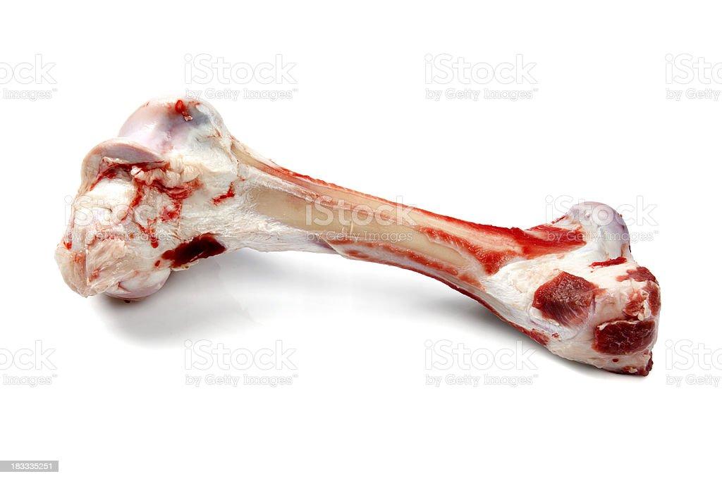 Dog bone royalty-free stock photo