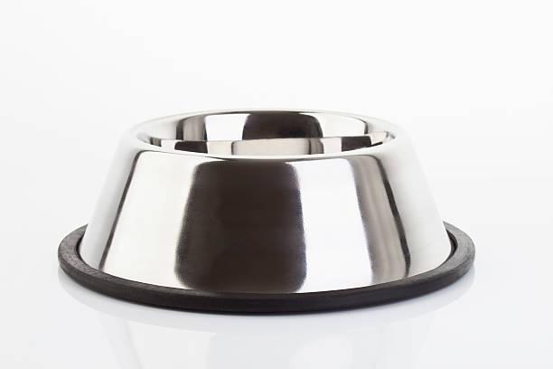 dog bowl on white background - hundenapf stock-fotos und bilder