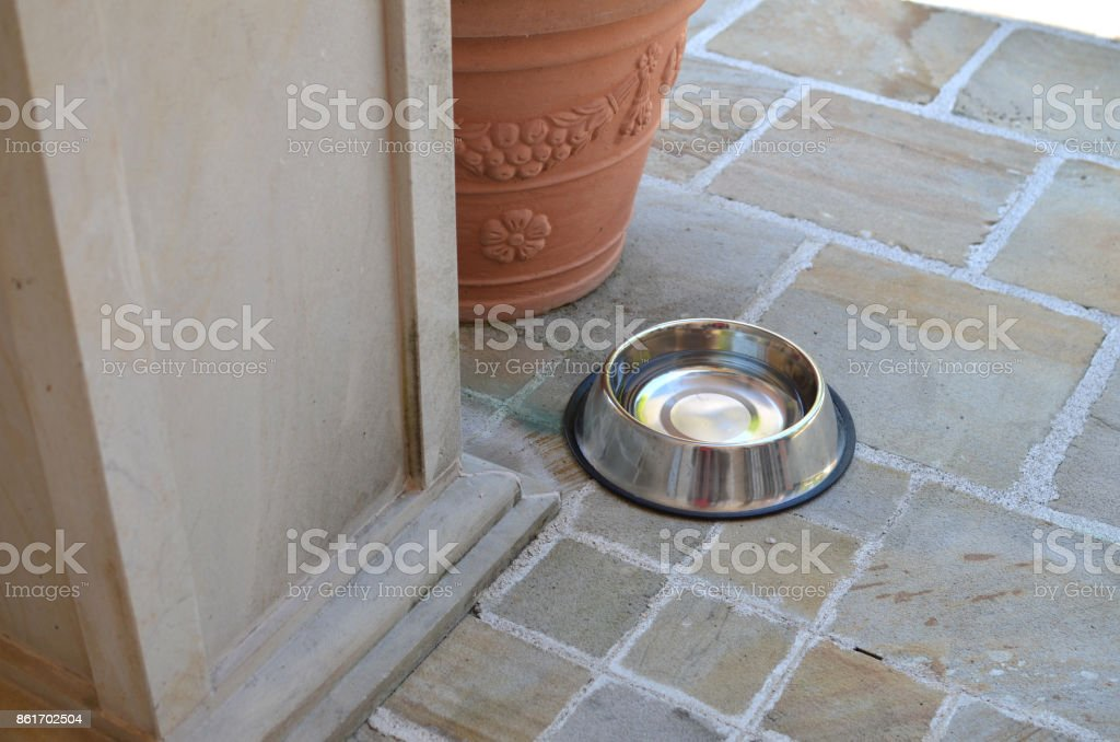 Dog bowl outdoor stock photo