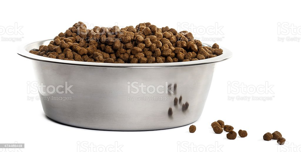 Dog bowl with croquettes full to the brim, isolated stock photo