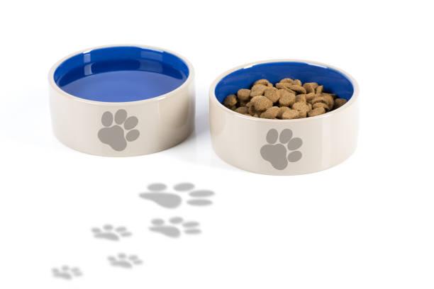 hundenäpfe mit fußspuren - hundenapf stock-fotos und bilder