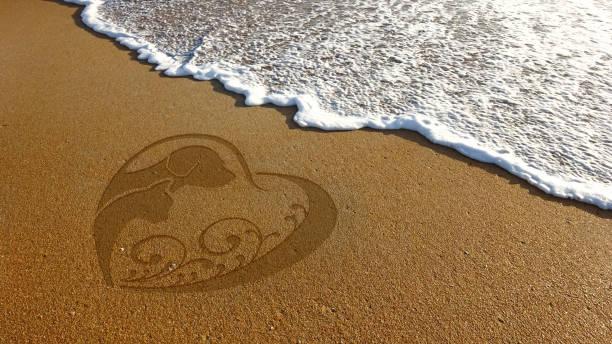 Dog cat lover sand illustration in beach picture id639780546?b=1&k=6&m=639780546&s=612x612&w=0&h=88jdtclhegr4qab92sy0nkebenlooygly9ntdm4quoi=