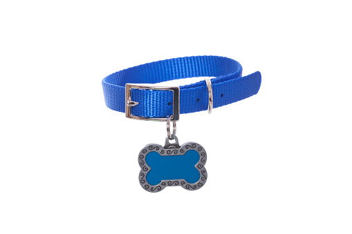 Blue dog collar with heart shaped tag on white.PLEASE CLICK ON THE IMAGE BELOW TO SEE MY DOGGY LIGHTBOX PORTFOLIO: