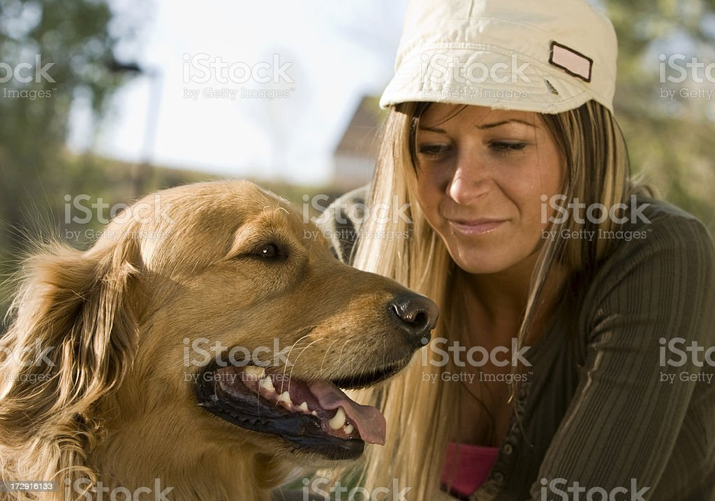 Dog days of summer royalty-free stock photo