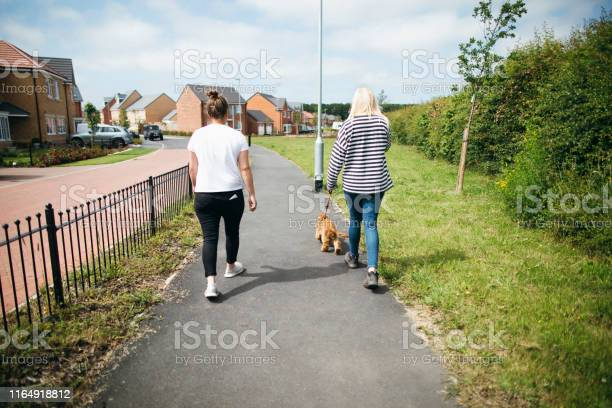 Dog duties picture id1164918812?b=1&k=6&m=1164918812&s=612x612&h=frzh5zyg0moyqqwuzr py tkug3u27uyhkzkxk bp1w=