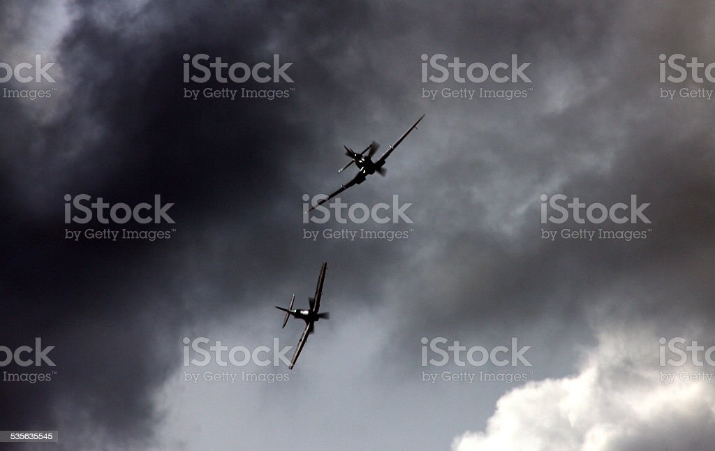 Dog fighting over Lincolnshire stock photo