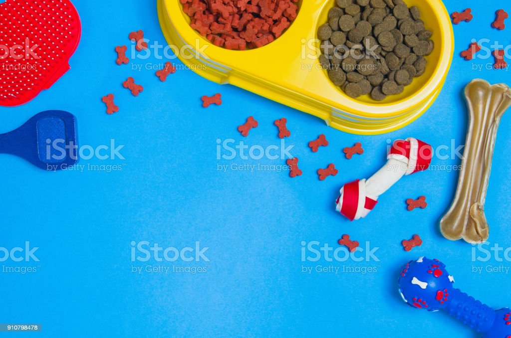 Dog food and accessories on blue background top view stock photo