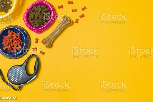 Dog food and accessories on yellow background top view picture id913932120?b=1&k=6&m=913932120&s=612x612&h=vfvcniagjbbbj4nijkogqd9 fjup c jk62h52wou7i=