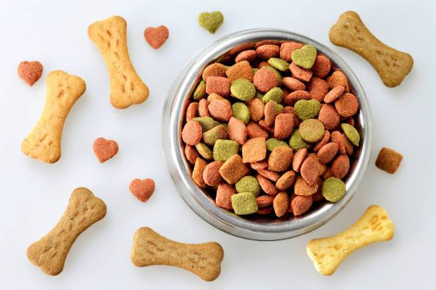 hund essen in die schüssel und knochen geformt kekse - hundenapf stock-fotos und bilder