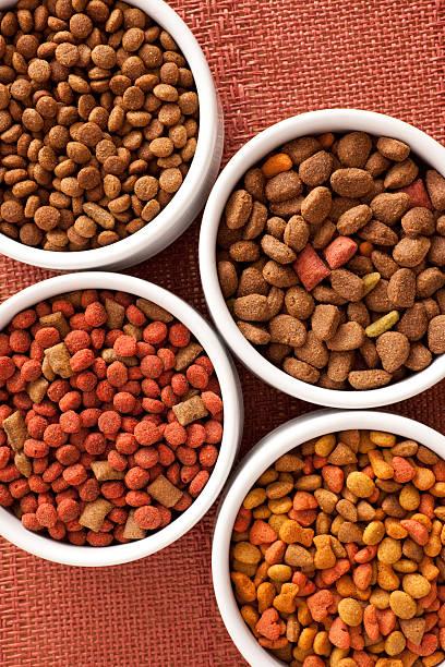 comida de cão variedades - dog food imagens e fotografias de stock
