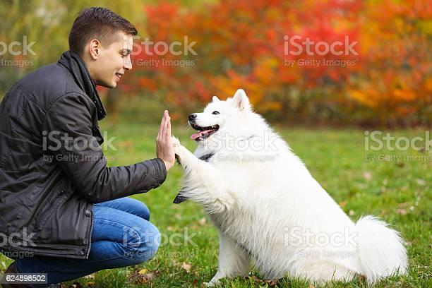 Dog giving a young man a high five picture id624898502?b=1&k=6&m=624898502&s=612x612&h=nptmbvbyx7xmvmayt1fxmc7jboasyvhtirnzkegt7iq=