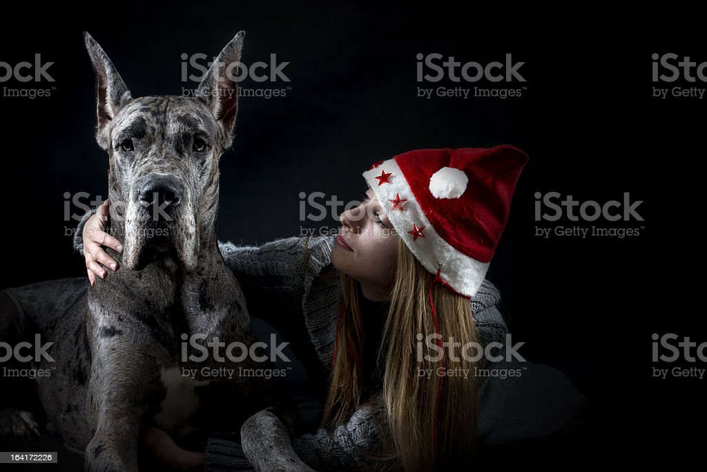 dog Great Dane with girl in cap Santa Claus royalty-free stock photo