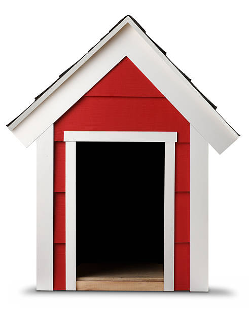Dog House stock photo