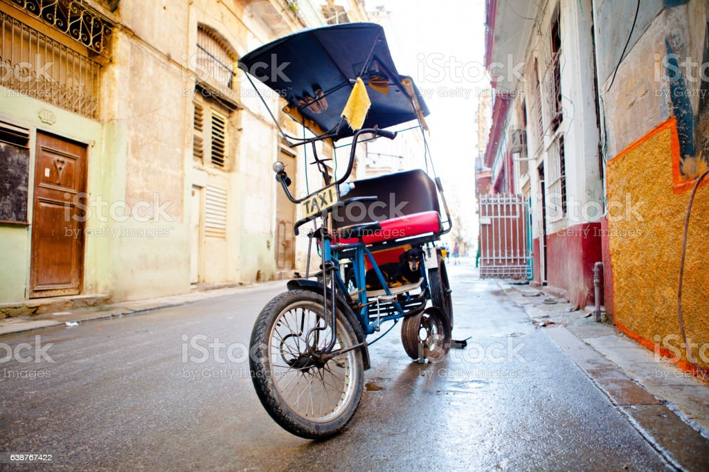 Dog in a Bicycle taxi in Old Havana / Cuba stock photo