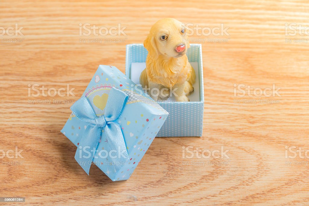 Dog in a gift box royalty-free stock photo
