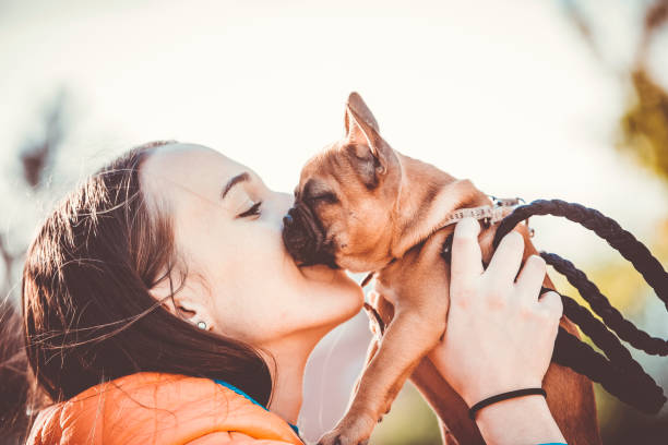 Dog is men's best friend stock photo