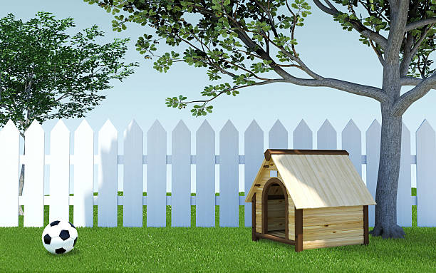 dog kennel on grass meadow with soccer ball and fence - gartenillustration stock-fotos und bilder