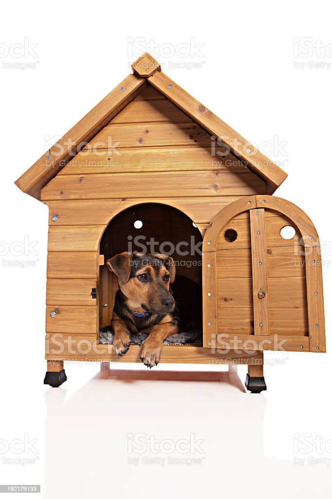 Dog Kennel royalty-free stock photo