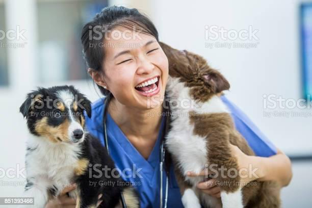 Dog kisses picture id851393466?b=1&k=6&m=851393466&s=612x612&h=amqmamxfwah7 x1lz1bixz ea8dsimvaawwagrslwxo=
