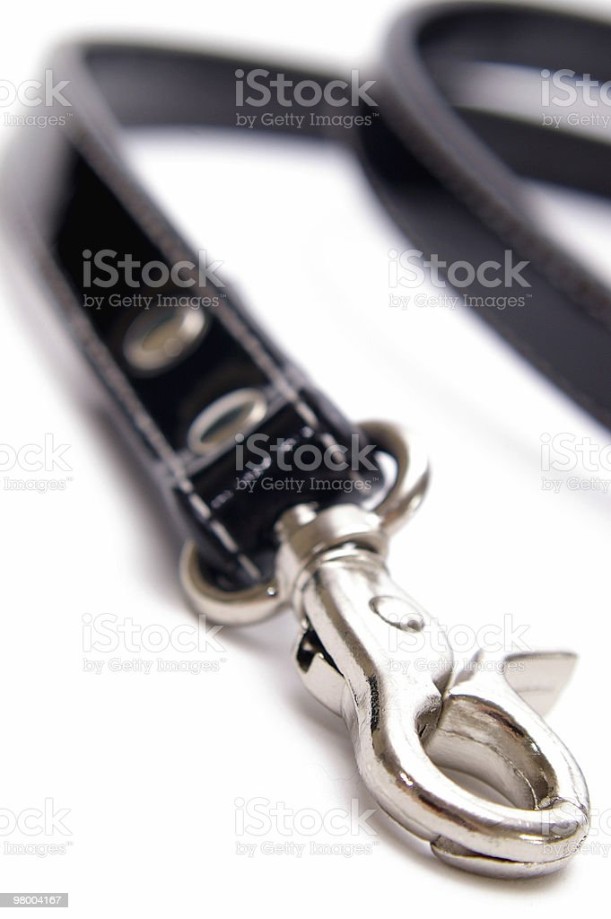 Dog Lead Vertical royalty-free stock photo