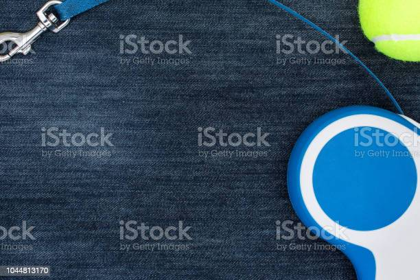 Dog leash and toy on a blue jeans background top view picture id1044813170?b=1&k=6&m=1044813170&s=612x612&h=ea8murfitz9rvdgqwldjminc8ewgd5brcmmhzcscxr0=